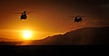 RAF Chinook Helicopters at Sunset MOD 45157573.jpg