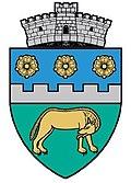 Brâncoveneşti Coat of Arms