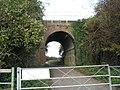Railway bridge to Berehill Farm - geograph.org.uk - 602663.jpg
