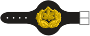 Rasal-Yekhidati-3-1-1.png