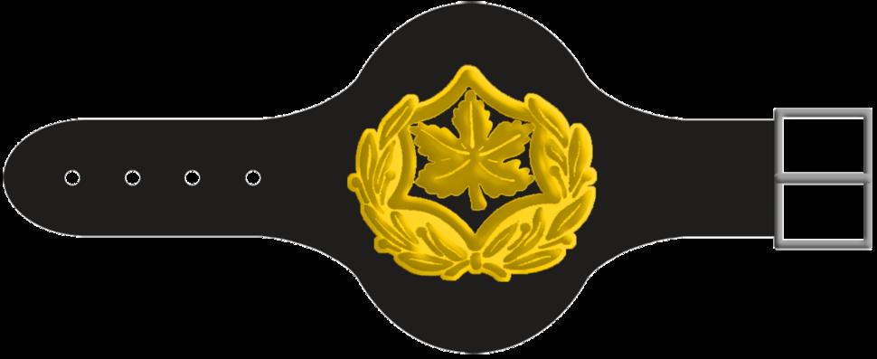Rasal-Yekhidati-3-1-1