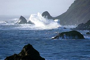 Pacific coast in Redwood National Park