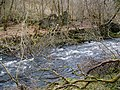 Remains of charcoal mill beside the River Carron - geograph.org.uk - 1769984.jpg