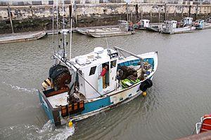 Retour de la pêche du chalutier L' Entracte II (1).JPG