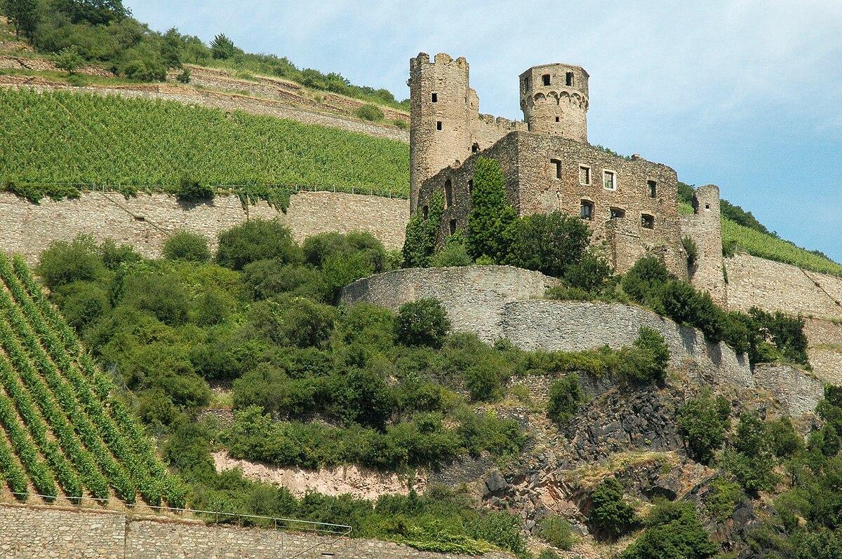 Ehrenfels Castle (Hesse) - Wikipedia