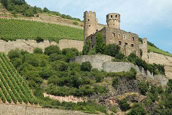 English: Burg Ehrenfels and vineyards in Rudes...