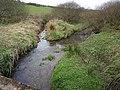 River Camel - geograph.org.uk - 730664.jpg