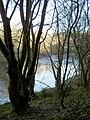 River Nith - geograph.org.uk - 313720.jpg