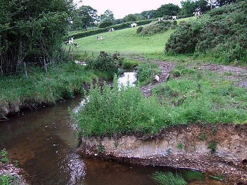 River Synderford River Synderford - geograph.org.uk - 478843.jpg