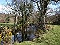 River Teign below Dogmarsh Bridge - geograph.org.uk - 1243080.jpg