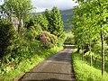 Road to Balquhidder - geograph.org.uk - 573328.jpg