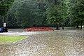 Roman Forest Flood - 4-18-16 (26419771222).jpg