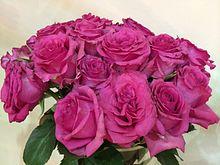 220px-Rose%285%29.JPG
