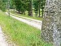 Rosshüttenweg (Schluchsee - Feldberg) - panoramio.jpg