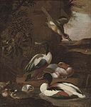 Royen, Willem Frederik van - Ducks in a landscape.jpg