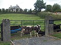 Rural scene - Cross of Knockardon - geograph.org.uk - 2544321.jpg