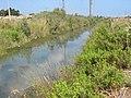 Saadia River Israel, arik Drobot.jpg
