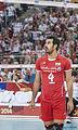 Saeid Marouf IRN WC 2014.jpg
