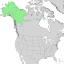 Salix alaxensis range map 1.png