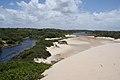 Sand buggying (8227137538).jpg