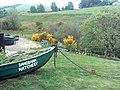 Sandbank Hatchery - geograph.org.uk - 453509.jpg