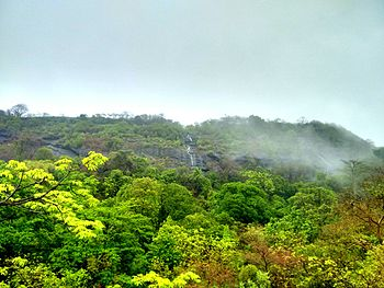 Sanjay Gandhi National Park Borivali.jpg