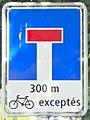 SansIssue sauf vélos-Genève3.jpg