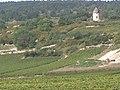 Santenay (Bourgogne) - vignoble.JPG