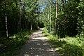 Saue, Harju County, Estonia - panoramio (45).jpg