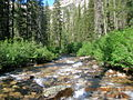 Sawtooth Wilderness stream 1.JPG