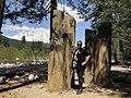 Saylor Moss, Historical Landscape Architect (28474298578).jpg