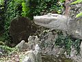 Schio giardino jacquard coccodrillo.jpg
