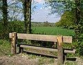 Seat on Downs Link - geograph.org.uk - 412103.jpg