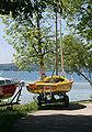 Segelboot Starnberger See Haenger.jpg