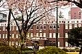 Seikei University (10).jpg