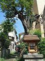 Sengen Shrine (浅間神社) - panoramio.jpg