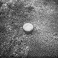 Serie Landmijnen ruimen bij Hoek van Holland, Bestanddeelnr 900-6488.jpg