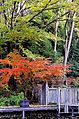 Seseragi Park - panoramio.jpg