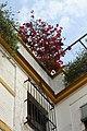 Sevilla 3001 05.jpg