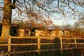 Sheds at Shepherd's Green - geograph.org.uk - 1049729.jpg