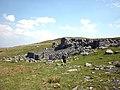 Sheepfold, west flank of Meldon Hill - geograph.org.uk - 1901108.jpg