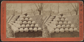 Shell pyramids, from Robert N. Dennis collection of stereoscopic views 2.png