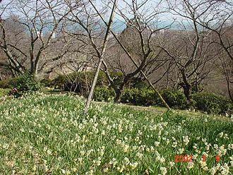 Moji-ku, Kitakyūshū - Shiranoe botanical gardens