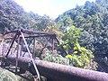 Shivapuri-Nagarjun National Park (73).jpg