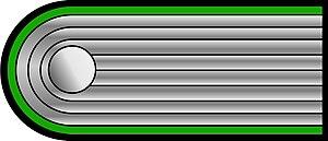 Untersturmführer - Image: Shoulder wss ill untersturmf