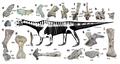 Shringasaurus indicus.png