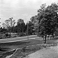 Sibeliuksen puistoa molemmin puolin Mechelininkatua - N21125 - hkm.HKMS000005-km0000mnxs.jpg