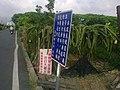 Signs on a Road in rural Changhua.jpg