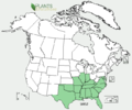 Silphium asteriscus US-dist-map.png