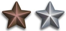 Silver and Bronze Service Stars